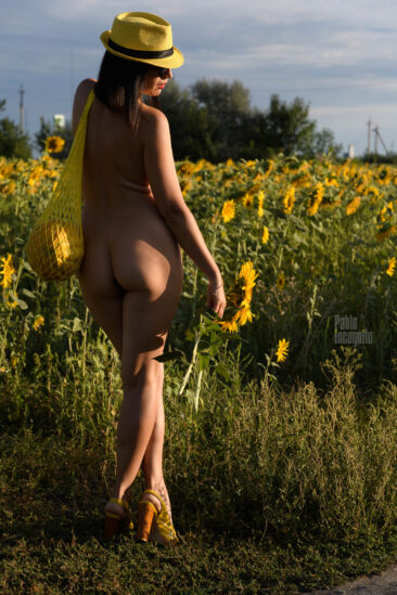 Naked in sunflowers - nude photoshoot in the field. Photo by Pablo Incognito